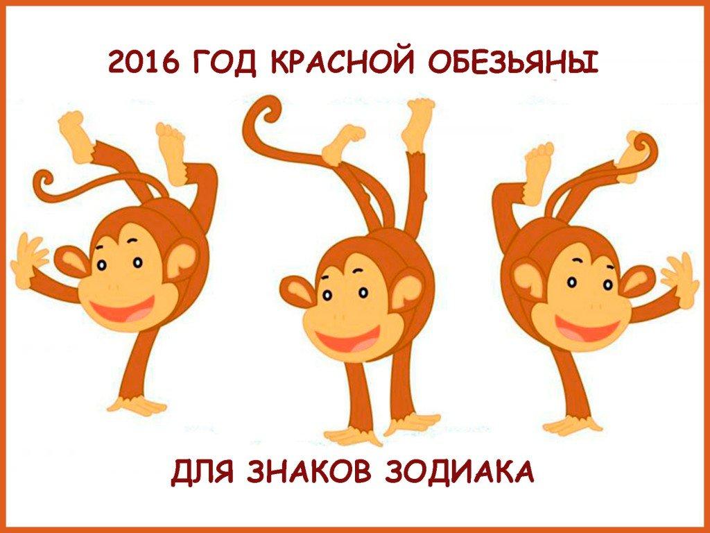 2016 год Огненной Обезьяны для знаков Зодиака